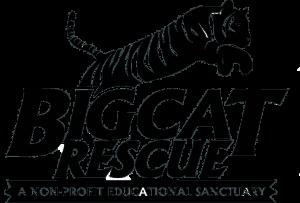 Bigcat Rescue